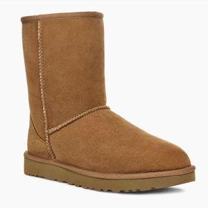 UGG Chestnut Short Boots Size 8 US